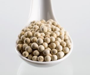 White peppercorns on a porcelain spoon